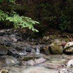とやの沢オートキャンプ場@道志。キャンプレポその2 思いっきり川遊び!