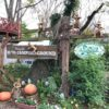 有野実苑オートキャンプ場(ありのみえん)で、平日ガラガラキャンプを楽しんできました