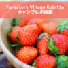 【後編】炊事場トイレがきれいすぎなキャンプ場、フォレスターズビレッジコビット|Foresters Village Kobitto