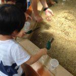 奇石博物館で宝石探し★朝霧高原キャンプに来たらぜひ寄りたい!