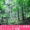ネイチャーランドオム@道志キャンプレポ前編 緑あふれた林間のフリーサイト