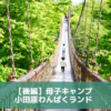 【後編】初めての母子キャンプ|小田原いこいの森とわんぱくランド