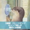 【後編】ストーンチェアキャンプ場レポ|朝市と下田海中水族館